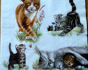 Cats and kittens napkin