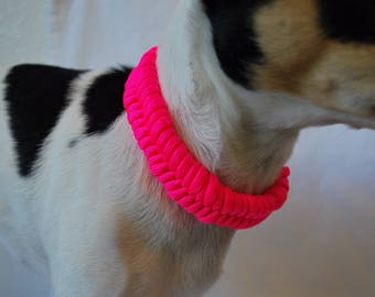 Hot Pink Fishtail Dog Collar, Ring For Tags, Buckle On,