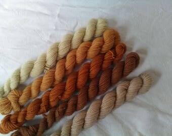 Minis skeins,socks yarn wool and nylon naturally hand dye