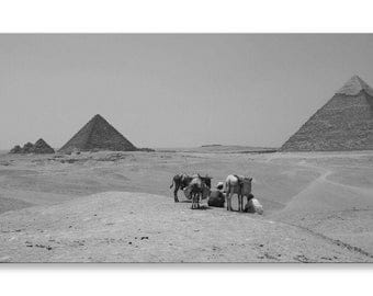 Pyramids Of Giza Egypt Black And White  Panorama Canvas Wall Art Home Decor