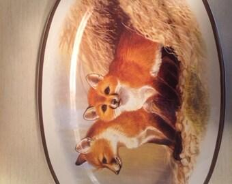 National Wildlife Fox Platter