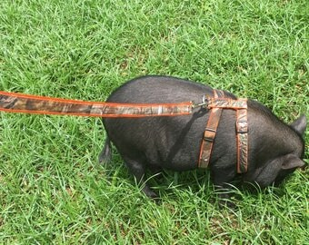 Camouflage/Orange Pig Harness