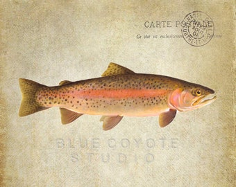 Rainbow Trout Print Man Cave Trout Wall Art Fish Print Fish Nursery Art Digital Download Printable File #bc144