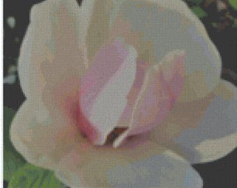 004 - magnolia flower - cross stitch patter