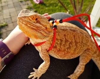 Adjustable Bearded Dragon Harness