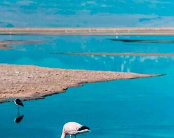Original fine art photography print - Atacama Salar