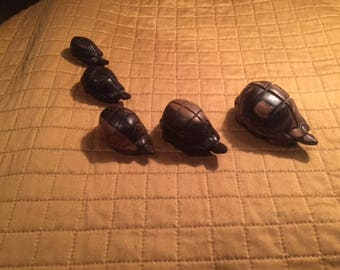 Hand Craved Africian Spurred Tortoise Set of 5