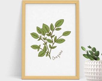 Botanical Herbs Print, Oregano, Herbs Print, Kitchen Decor, Botanical Print, Herbs Printable,Botanical Prints,Handdrawn Print,Herbs Wall Art