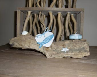 Composition on a piece of driftwood