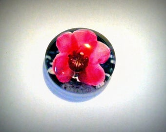 Orchid cabochon, glass round 20mm flower orchid pink