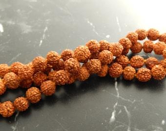 10 Rudraksha seed beads