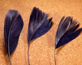 has 5 feather stem-teal-Blue Navy 14 cm 19 cm - 06 PLU