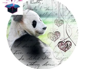 1 cabochon clear 18 mm panda theme
