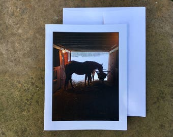 Horse In The Barn Notecard - Blank Inside - Ships free!