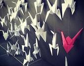 Rideau de Guirlandes d'origamis Grues (50 grues)