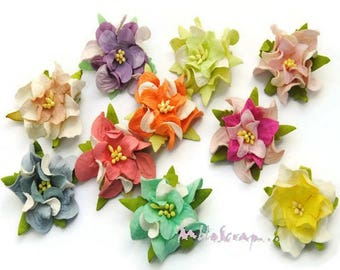 Set of 10 gardenias multicolor embellishment cardmaking scrapbooking paper *.