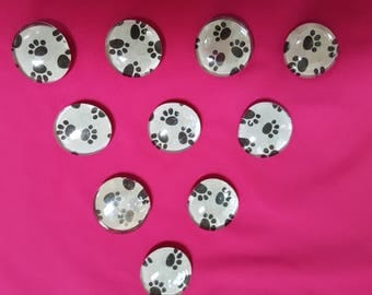 Paw Print Bubble Magnets