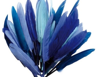 Feather Indian blue shades - 15 cm - 10 grams - 40 feathers around, new