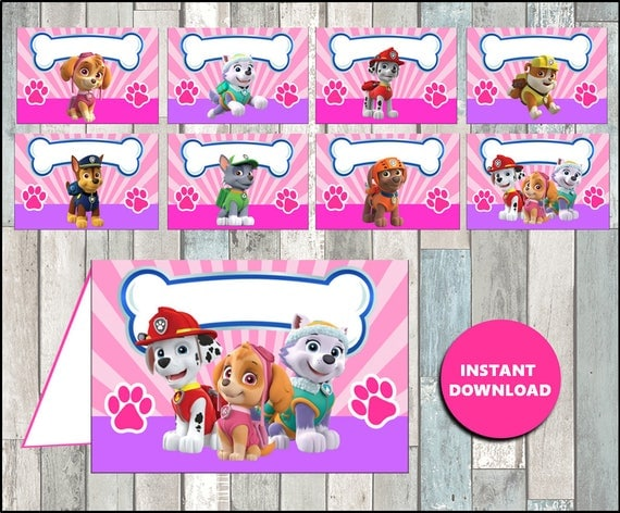 Printable Pink Paw Patrol Food Labels Instant Download Girl