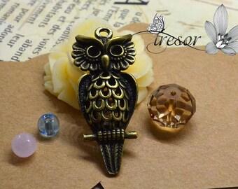 1 pcs QDW305 pendant Bronze owl, bird, OWL