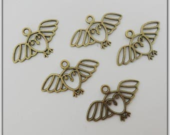 Set of 5 OWL charms, bronze color
