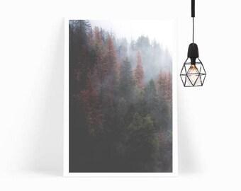 Nordic Forest Print, Scandi Wall Art, Tropical Print, Misty Forest, Scandinavian Decor Modern Minimalist Poster Print-FRAME&MOUNT