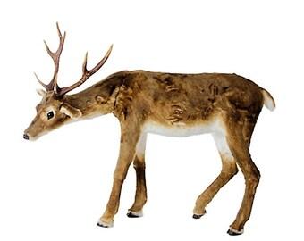 "Raz Imports 51"" Down Facing Deer RAZ3617553"