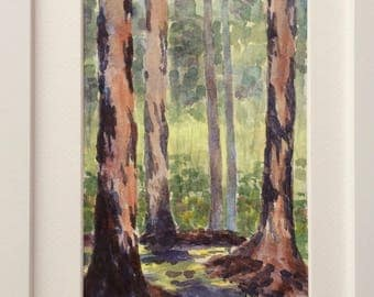 Majestic Gums, Margaret River, Western Australia, Framed Original Watercolour Painting
