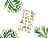 Succulents Stickerset  - Aquarell Sticker - Pretty Planning - Scrapbooking - Bullet Journaling