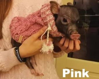 Mini Pig Clothes