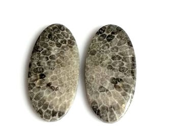 Black Coral Oval Pair Cabochon,Size- 26x13, MM, Natural Black Coral, AAA,Quality  Loose Gemstone, Smooth Cabochons.