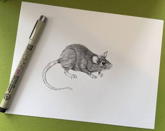 Cute rat ink illustration on watercolour paper 6 x 8 inches