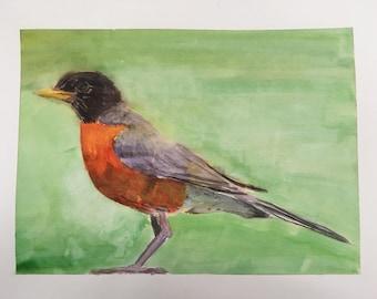Robin watercolor