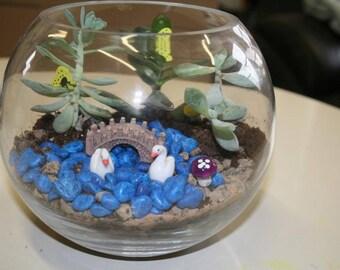 Succulent Fairy Garden Terrarium