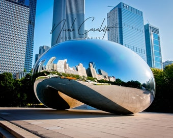 "The Bean 8"" x 10"" print on metal, with metal bracket"