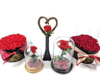 Enchanted Rose, Beauty and The Beast Rose, Preserved Flowers, Long Stem Red Roses, Red Forever Rose, Belle Rose, Gift For Her, Eternity Rose