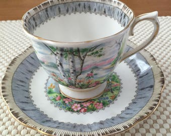 "Royal Albert ""Silver Birch"" teacup and saucer"