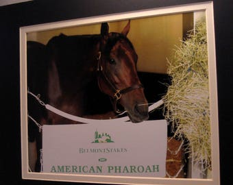 American Pharoah Portrait Canvas Art Print Triple Crown Winner