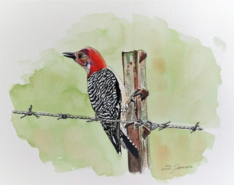 Pileated Woodpecker Watercolor Painting Archival Print
