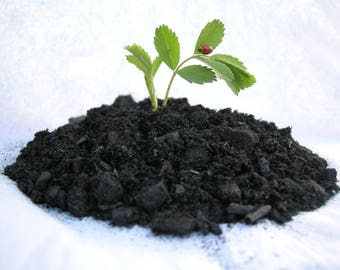 Organic Biochar - Soil Activator Amendment with Mychorrihizals - Turbocharge your garden! - Low Dust - Indoor / Outdoor - All Natural