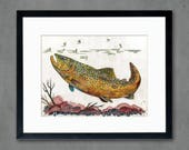 Brown Trout II Art Print on Paper