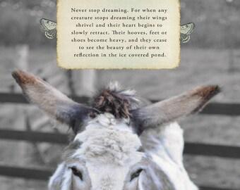 Matilda the donkey's hope