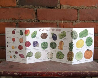 40 Weeks of Baby Bump Accordion Card | Fruit and Vegetable Pregnancy Baby Shower Gift