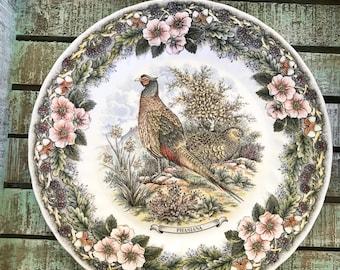 Myott Factory Archive Illustrations Wildlife Dinner Plate Pheasant Phasiana Hunter TYCAALAK