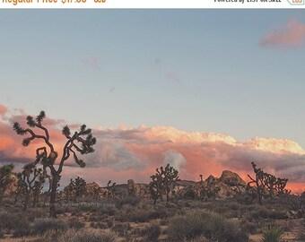 SALE desert sunset photograph, Joshua Tree, desert decor, office decor, blue, pink, earth tones, Southwestern, California wall art, Coachell