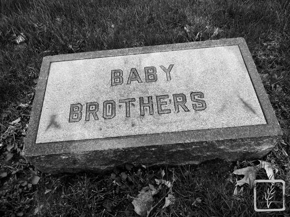 """Baby Brothers,"" Crown Hill Cemetery, Indianapolis, Indiana, 2013."