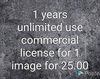 1 years unlimited use commercial  license for 1 image for 25.00