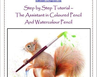 Step by Step Tutorial - The Assistant in Coloured Pencil and Watercolour Pencils