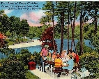Vintage Tennessee Postcard - Picnic at Cumberland Mountain State Park (Unused)