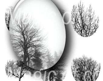 Bare Trees  - 90  18x25 mm Oval  JPG images - Digital  Collage Sheet